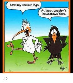 Memes, Chicken, and Leggings: I hate my chicken legs. At least you don't have crows' feet. Funny Cartoons, Funny Comics, Funny Jokes, Comedy Comics, Cartoon Jokes, Dad Jokes, Chicken Jokes, Funny Chicken, Farm Humor