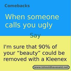 comebacks when someone calls you ugly