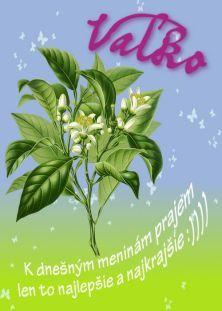 meninové priania Plant Leaves, Thing 1, Herbs, Plants, Blog, Poster, Herb, Blogging, Plant