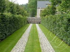 hedges in the driveway Driveway Design, Driveway Landscaping, Permeable Driveway, Landscape Architecture, Landscape Design, Garden Design, Driveway Entrance, Garden Paving, Garden Gates