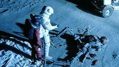 moontrap-6.jpg (640×360)