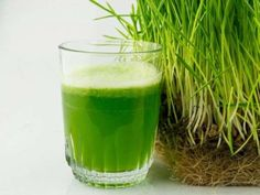 Rumor has it, the Duchess of Sussex prefers green juice over coffee. Learn more about Meghan Markle's green juice, including its many health benefits, here. Wheatgrass Juicer, Wheatgrass Powder, Smoothie Packs, Smoothies, Smoothie Recipes, Superfoods, Human Digestive System, Melt Belly Fat, Liver Detoxification