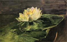 """""""Water Lily,"""" John La Farge, 1896, watercolor and gouache on paper, 9.8 x 6.26"""", private collection."""