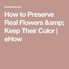 How to Preserve Real Flowers & Keep Their Color | eHow