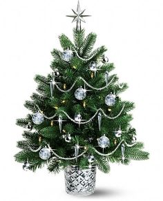 5973b4a032dd 832 Best CHRISTMAS - Trees Themed Decor & Designs images in 2018 ...