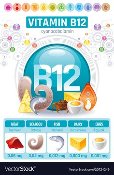 Cyanocobalamin vitamin supplement food icons vector image on VectorStock Health Vitamins, Health And Nutrition, Nutrition Tracker, Daily Vitamins, Health Facts, Health Tips, Women's Health, Vitamin B12 Benefits, Human Body