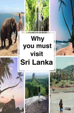 Sri Lanka Backpacking - The most important destinations when backpacking Sri Lanka. Watch Elephants at the Elephant sanctuary in Pinnawala. Backpacker, Ecommerce Hosting, You Must, Sri Lanka, Travel, Backpacking, Viajes, Traveling, Trips