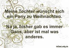 Meine Tochter wünscht sich ein Pony zu Weihnachten. Na ja, bisher gab es immer Gans, aber ist mal was anderes. ... gefunden auf https://www.istdaslustig.de/spruch/205/pi