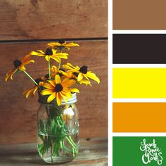 Yellow flowers // Summer Color Palettes // Click for more color schemes, mood boards and color combinations inspired by Summer at https://sarahrenaeclark.com #color #colorscheme #colorpalette