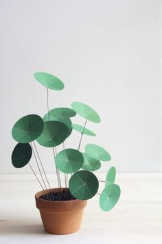 Easy DIY Projects - Paper Chinese Money Plant DIY - Easy DIY Crafts and Projects - Simple Craft Ideas for Beginners, Cool Crafts To Make and Sell, Simple Home Decor, Fast DIY Gifts, Cheap and Quick Project Tutorials Diy Paper, Paper Crafting, Paper Art, Diy Flowers, Paper Flowers, Chinese Money Plant, Papier Diy, Diy Simple, Fleurs Diy