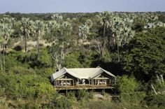 Botswana is home to the Okavango Delta, which is one of the top wildlife destinations in Africa with worldclass lodges set out in remote wilderness. Tree Camping, Okavango Delta, Wildlife Safari, Game Reserve, African Safari, Family Adventure, Stunning View, Lodges, Tent