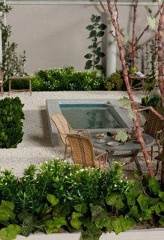 Modern Mini Houses - Gardens by Christine London