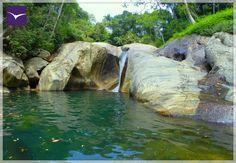 Time to get lost in the nature !  #EllaJungleResort #tourism #srilanka #nature #eco #travel #spiritual Like Us:https://www.facebook.com/ellajungleresort