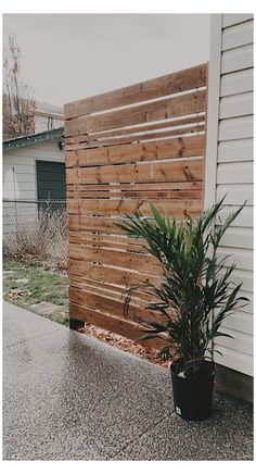 Privacy Fence Designs, Privacy Screen Outdoor, Deck Ideas With Privacy, Decks With Privacy Walls, Deck Privacy Screens, Decking Ideas, Backyard Patio, Backyard Landscaping, Privacy Fence Landscaping