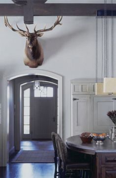 Decorating with antlers