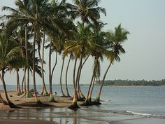 """""""Set at the mouth of the Volta River, the small riverside town of Ada Foah is known for its relaxed beach resorts, and a bordering marine turtle-viewing site."""" Ghana: the Bradt Guide; www.bradtguides.com/ghana"""