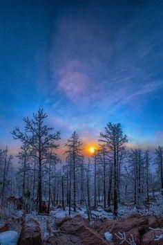 Cielo otoñal en un bosque septentrional.