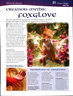 Creation Myths: Foxglove