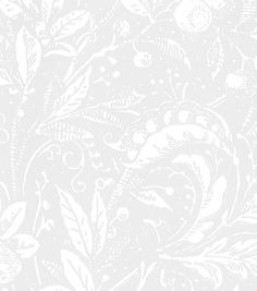 Penelope 794-21 - Seinäruusu - Verkkokauppa