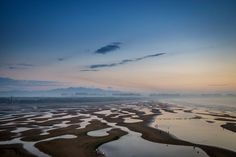 sea birds In the Bohai Bay Photo by Cob Coy -- National Geographic Your Shot