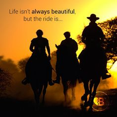 #life #beautiful #adventure #road #lifeontheroad #freedom #beautiful #horses #sunset #breakupbuddy #bub