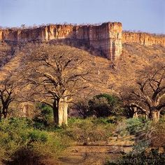 Chilojo Cliffs - Gonarezhou National Park (Earthcache) in Zimbabwe created by TechnoNut Highlands, Oh The Places You'll Go, Places To Visit, Safari, Out Of Africa, Thinking Day, All Nature, Places Of Interest, Belleza Natural