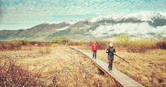A Morning Walk in Glenorchy Bad Photos, More Photos, Optical Illusion Wallpaper, Lake Wakatipu, Hdr Photography, Daily Photo, Optical Illusions, Nature Photos, Daily Inspiration