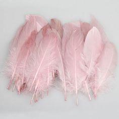idb #pink feathers