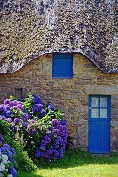 Hydrangea at blue door. St-Lyphard, Pays de la Loire, France - So Romantic with the blue door & window and blue hydrangeas.