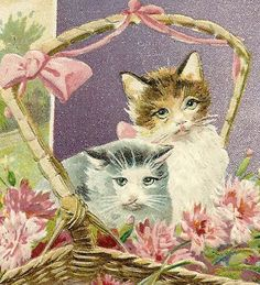 Embossed Postcard with Kittens and Flowers - Birthday Greetings