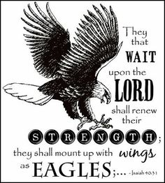 Isaiah 40:31 ~ they shall mount up with wings as eagles