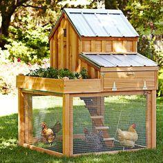 5 CHICKEN COOP designs.  This one is a Williams-Sonoma cedar chicken coop with garden box