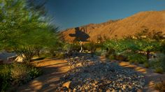 10 things to do in Palm Springs | Fox News
