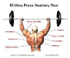 rear military press...change needed? Change different to consider all aspects of which individuals?