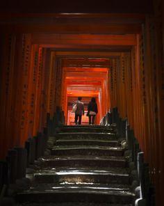 Inside Fushimi Inari, Kyoto, Japan