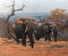 Savanna Elephants – 2006 Johan Hoekstra Wildlife Art | Johan ...