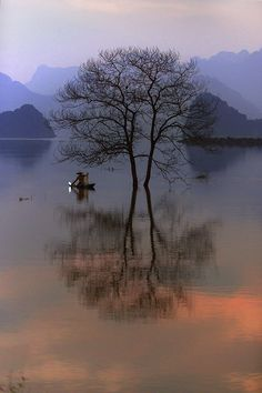 """""""Sunset"""" by Hai Thinh, Vietnam"""