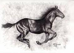 Resultado de imagen para dibujos de caballos