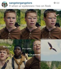 Laughed way too much on this.When your eyebrows are on fleek...poor Gally.