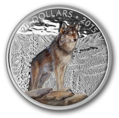 Canada 20 Dollars Silver Coloured Coin 2015 Alpha Wolf About the Design: Designed by Canadian artist Maurade Baynton, your coin featu. Canadian Gold Coins, Canadian Animals, Alpha Wolf, Coin Design, Coins For Sale, Majestic Animals, Rare Coins, Silver Coins, Stamps
