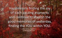 Happiness is finding the joy of each passing moments and continue to cherish the good memories of yesterday, finding the YOU within YOU.