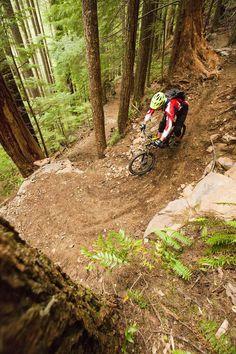Sandy Ridge Trail System www.formbycycles.co.uk