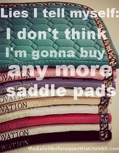 Even after a saddle pad purge, I've got 8 and I'm sewing up two more! Clearly, I have a problem.