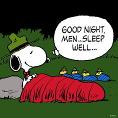 awe so cute ❤ snoopy Snoopy Cartoon, Peanuts Cartoon, Peanuts Snoopy, Snoopy Love, Snoopy And Woodstock, Snoopy Beagle, Snoopy Quotes, Peanuts Quotes, Peanuts Characters