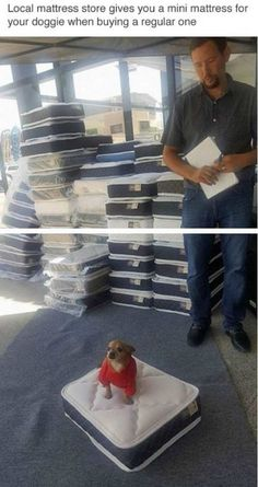 Dammit, that's just downright clever (Funny Pictures)