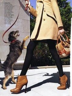 "The Terrier and Lobster: ""Best of Breed"" by Raymond Meier for US Vogue"