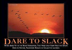 Dare to Slack