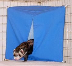 Item# HDW This is a tent that fits snugly into the corner of your cage. Ferrets LOVE these little retreats! Made with the highest quality fabrics and materials. 100% safe & washable! See our full line
