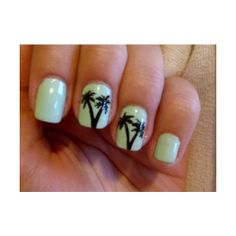 palm trees-cute for summer