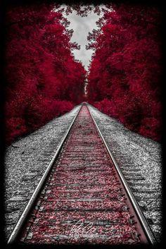 beautymothernature: Autumn in New Hampsh share... - My Hidden Shadow Self on imgfave